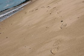 plage-iledere