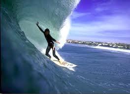 L'ile aux surfers