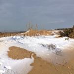 La plage de La Noue (Marie Brisdoux)