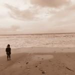 Une plage de l'ile
