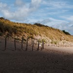 Dune de l'ile - Fred Blum