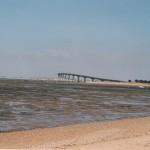 Le pont de l'ile de Ré - Dominique Sébillon