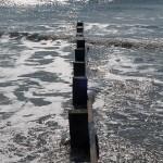 Vue sur l'océan - Fred Blum