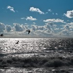 L'océan atlantique - Fred Blum