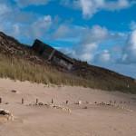 Blockhaus sur une dune - Fred Blum
