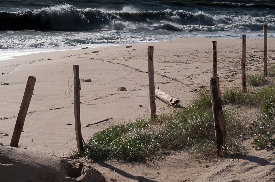 Dans les dunes - Fred Blum