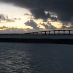 Le pont de l'ile de Ré - Fred Blum